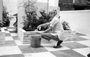 Dare's Story Photo of Dare Wright Tending Her Garden in New York